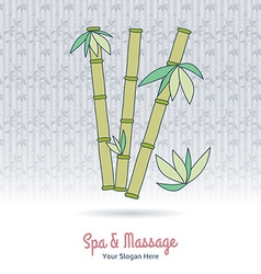 Hand drawn Thai massage and spa design elements vector