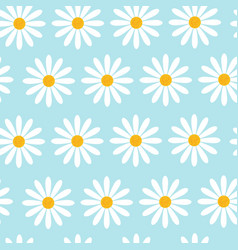 seamless pattern with camomile flowers on blue vector image