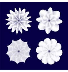 White spiral shapes vector image