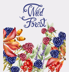 wild forest fruits bouquet card vector image