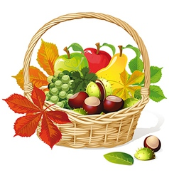 Basket with autumn fruit and vegetables vector image vector image