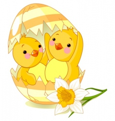 chickens and egg vector image vector image