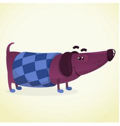 cartoon of cute dachshund vector image