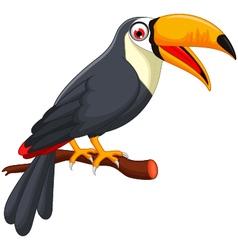 Cute cartoon toucan bird vector image vector image