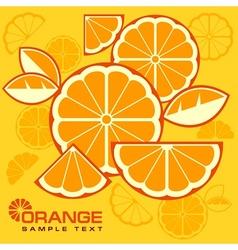 Citrus Fruit Slices background vector