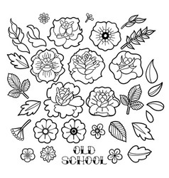 Graphic floral collection vector