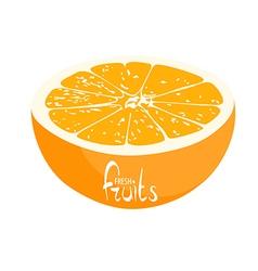 A lot of juicy oranges vector image