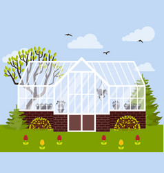 greenhouse with glass walls vector image vector image