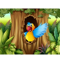 A bird in a tree hollow vector image
