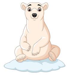 cartoon polar bear sitting on ice floe vector image