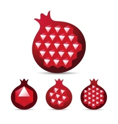 Pomegranate with gemstone ruby garnet seed vector