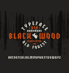 Sanserif font in black letter style decorated wood vector image