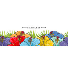tropical flowers hibiscuses seamless border vector image
