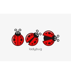 Ladybug Logo Set On White Design Background vector image