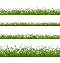 Green grass seamless pattern line vector image