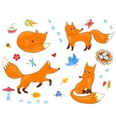 Set of cute foxes vector image