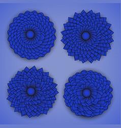 Blue chrysanthemums vector