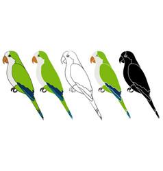 Caturrita bird in profile view vector
