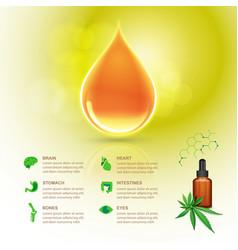cbd oil vector image