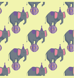 circus elephant artists carnival holiday wildlife vector image