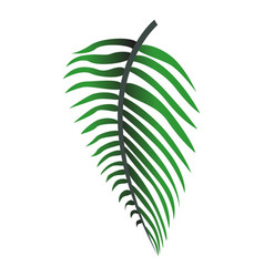 hawaii tropical leaf icon cartoon style vector image