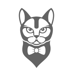 Portrait of Hipster Cat with Bow Tie Isolated on vector