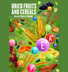 Vitamins in dried fruits nuts and cereals vector
