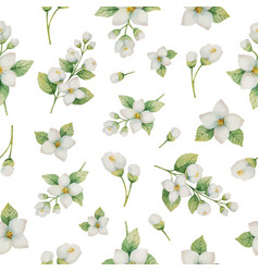watercolor seamless pattern flowers and vector image