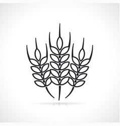 wheat black and white vector image
