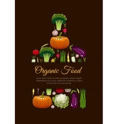 Organic vegetarian food emblem sign vector image vector image