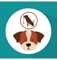 veterinary dog care training icon vector image