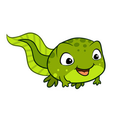 cartoon of a cute happy tadpole vector image