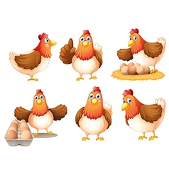 Chickens with eggs vector image vector image