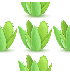 Agave - seamless pattern vector