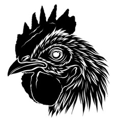 black silhouette roostera handdraw and sketch in vector image