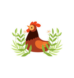 colorful rooster on green lawn farm cock poultry vector image