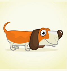 Cute basset hound dog cartoon vector