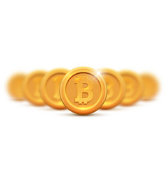 golden coin bitcoin sign money and finance symbol vector image