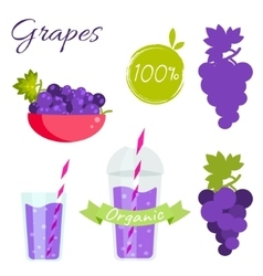 Grapes fruit and juice set vector image