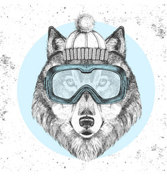 Hipster animal wolf in winter hat vector