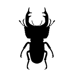 Insect silhouette stag-beetle Lucanus cervus vector image