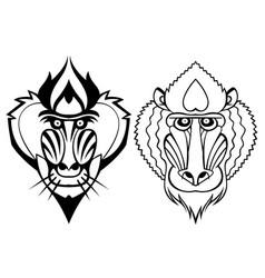 mandrill head vector image