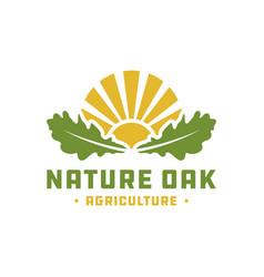 natural landscape logo with oak leaves vector image