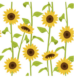 sunflower seamless pattern creative texture for vector image