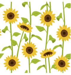 sunflower seamless pattern creative texture vector image