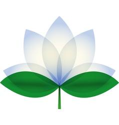 White Lotus blossom vector