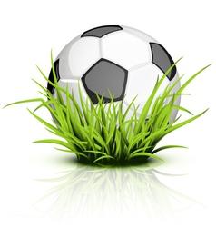 Soccer ball grass vector