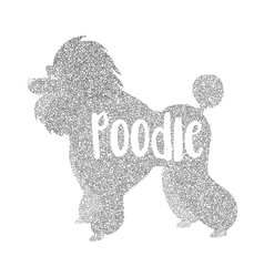Form of round particles poodle dog flat vector image vector image