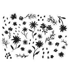 big collection of hand drawn ink flowers and grass vector image