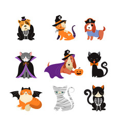 Happy halloween - cats and dogs in monsters vector